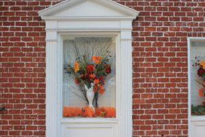 flower-in-window